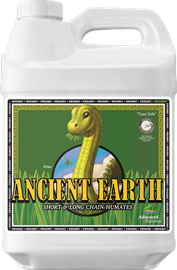 AN ANCIENT EARTH 10L