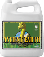 AN ANCIENT EARTH 4L